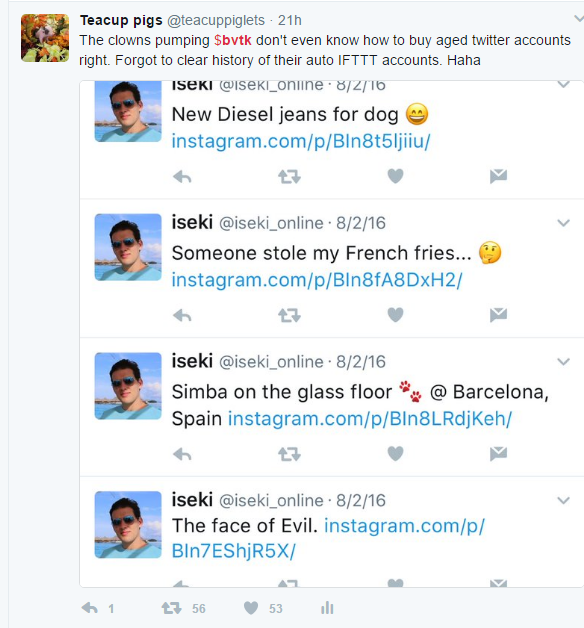 BVTK fake profile 2