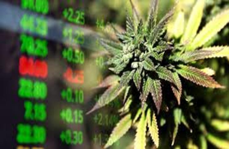 marijuana_stocks_743x482