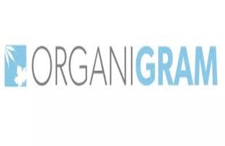 organigram_743x482