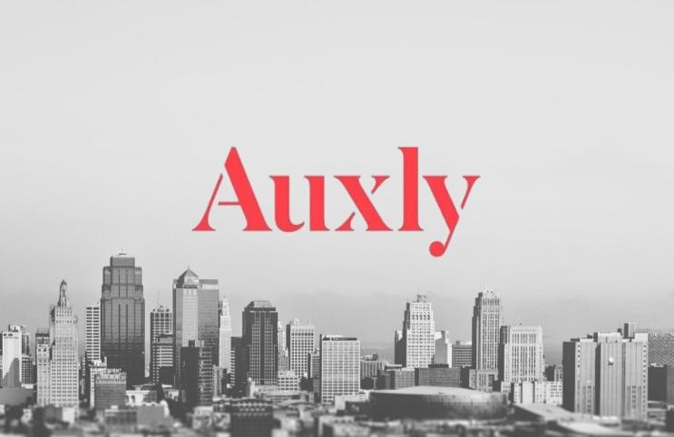 Auxly_1_743x482