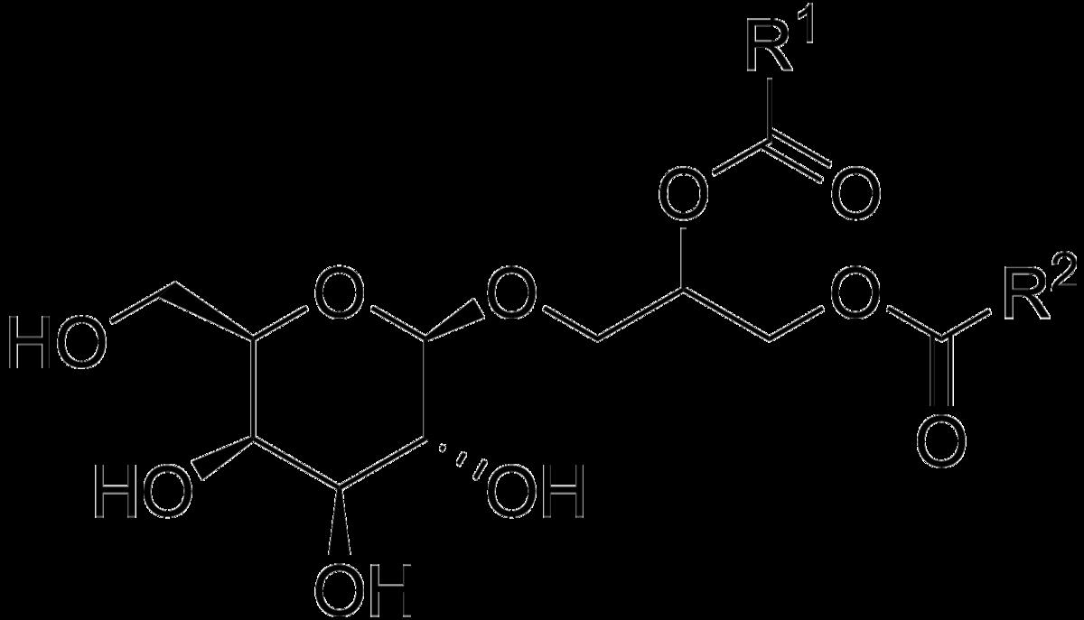 1200px-Monogalactosyl_diacylglycerol